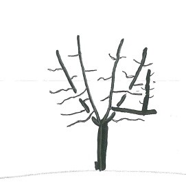Fig6TreeWithPost.jpg
