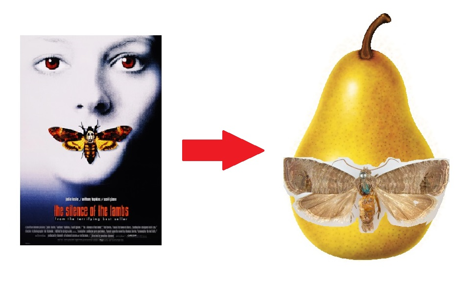 Silence: from Lambs to Pears