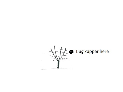An artistic representation of what a bug zapper in a tree looks like. Because taking pictures is hard.