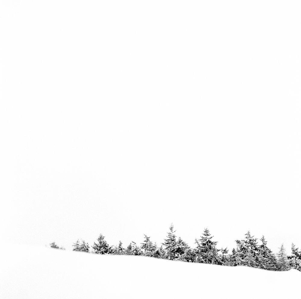 Snow-28003-2.jpg