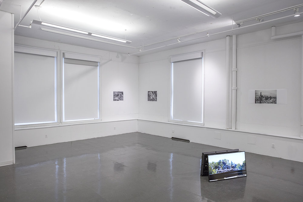 Installation view: Objective/Confess, 2015