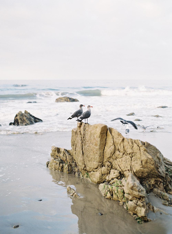 Charlotta - El Matador Beach Malibu - Peaches & Twine Fine Art Film Photography -39.jpg