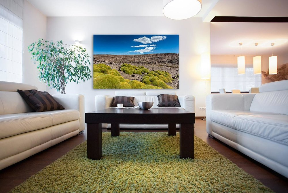 - Prints used in homes should command attention and make a statement.  Metal or acrylic prints are perfect for the modern home or office.