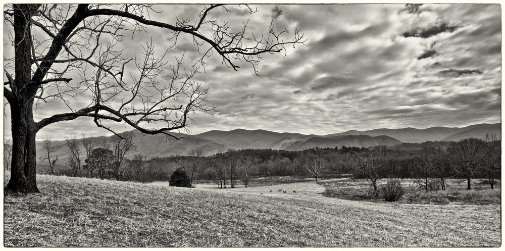 Cold Valley, Cades Cove, Tennessee