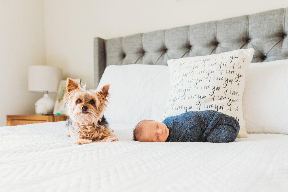 Amanda & Zach Lifestyle Newborn_April 2018-82.jpg