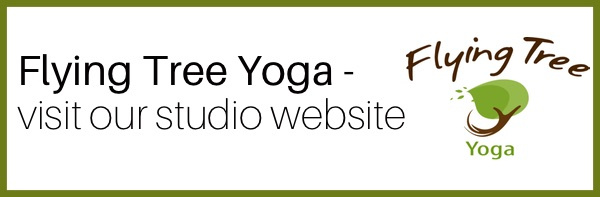Yoga Internship Program, Medellín, Colombia, South America - teach and work in a yoga studio - flying tree