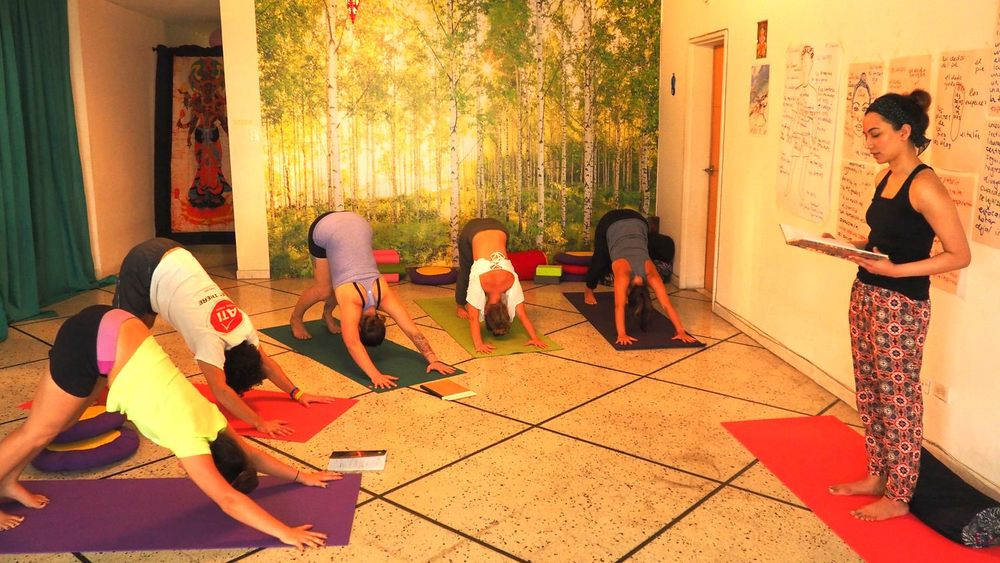 Yoga Internship Program, Medellín, Colombia, South America - teach and work in a yoga studio - spanish language course for yoga teachers photos 37