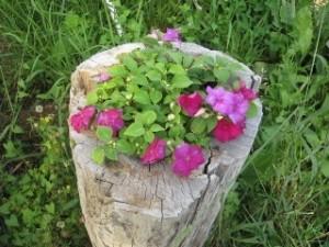 btfarmflowerstump
