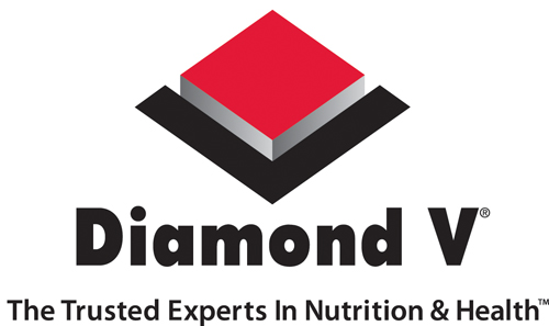 diamond-v.jpg