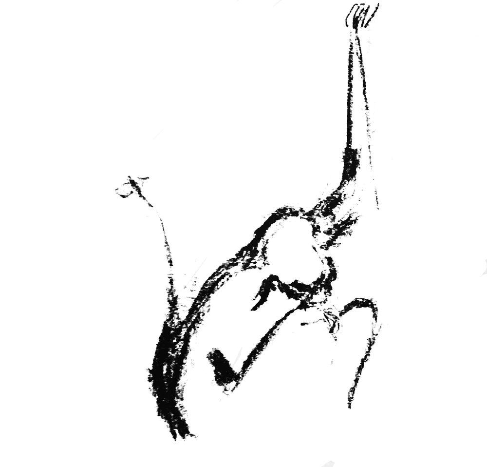 Affe-dirigent 2.jpg