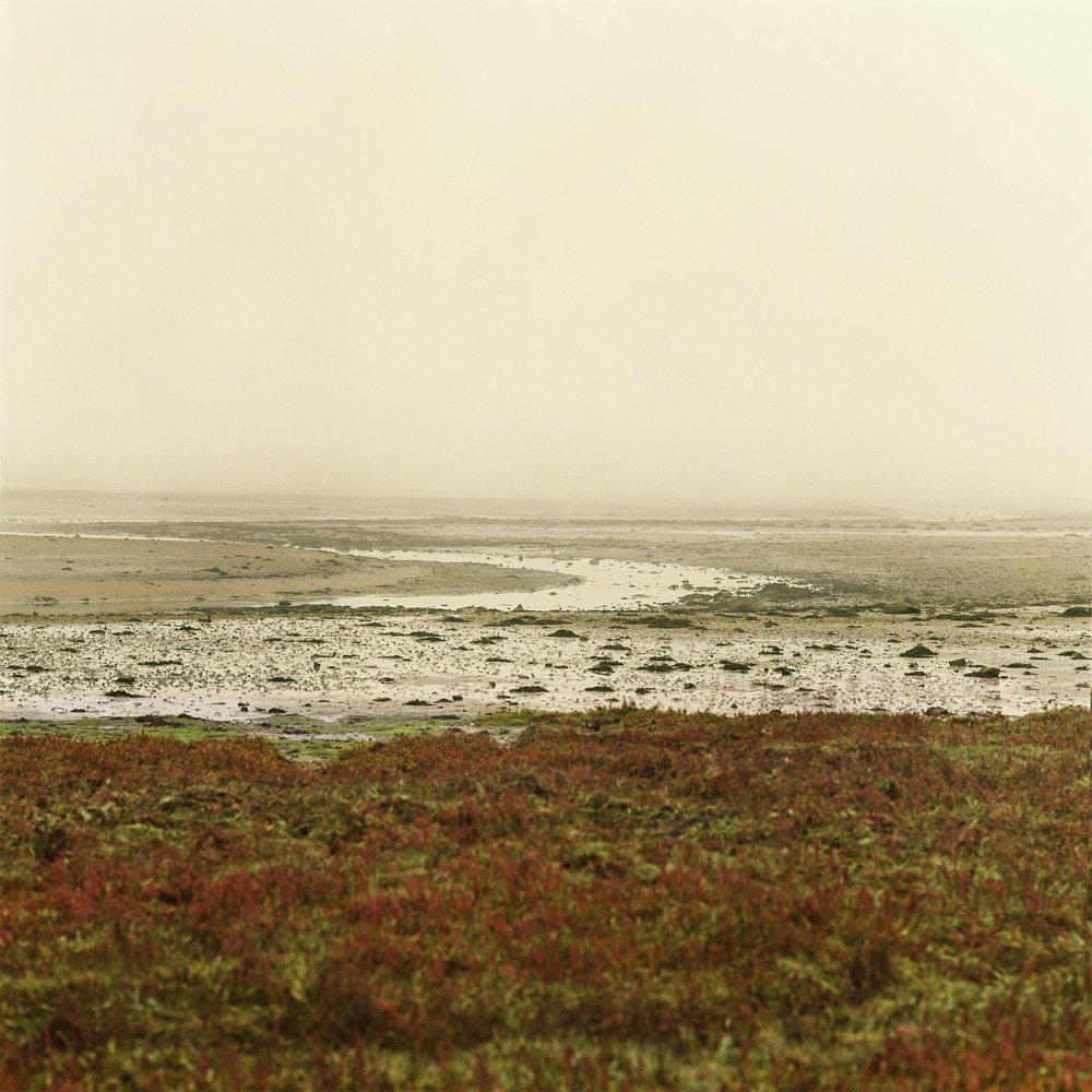 mist4.jpg