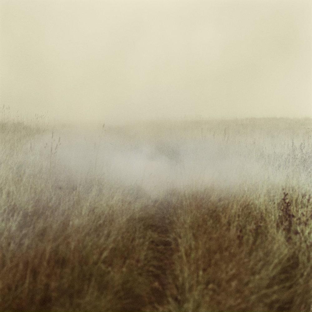 mist6.jpg
