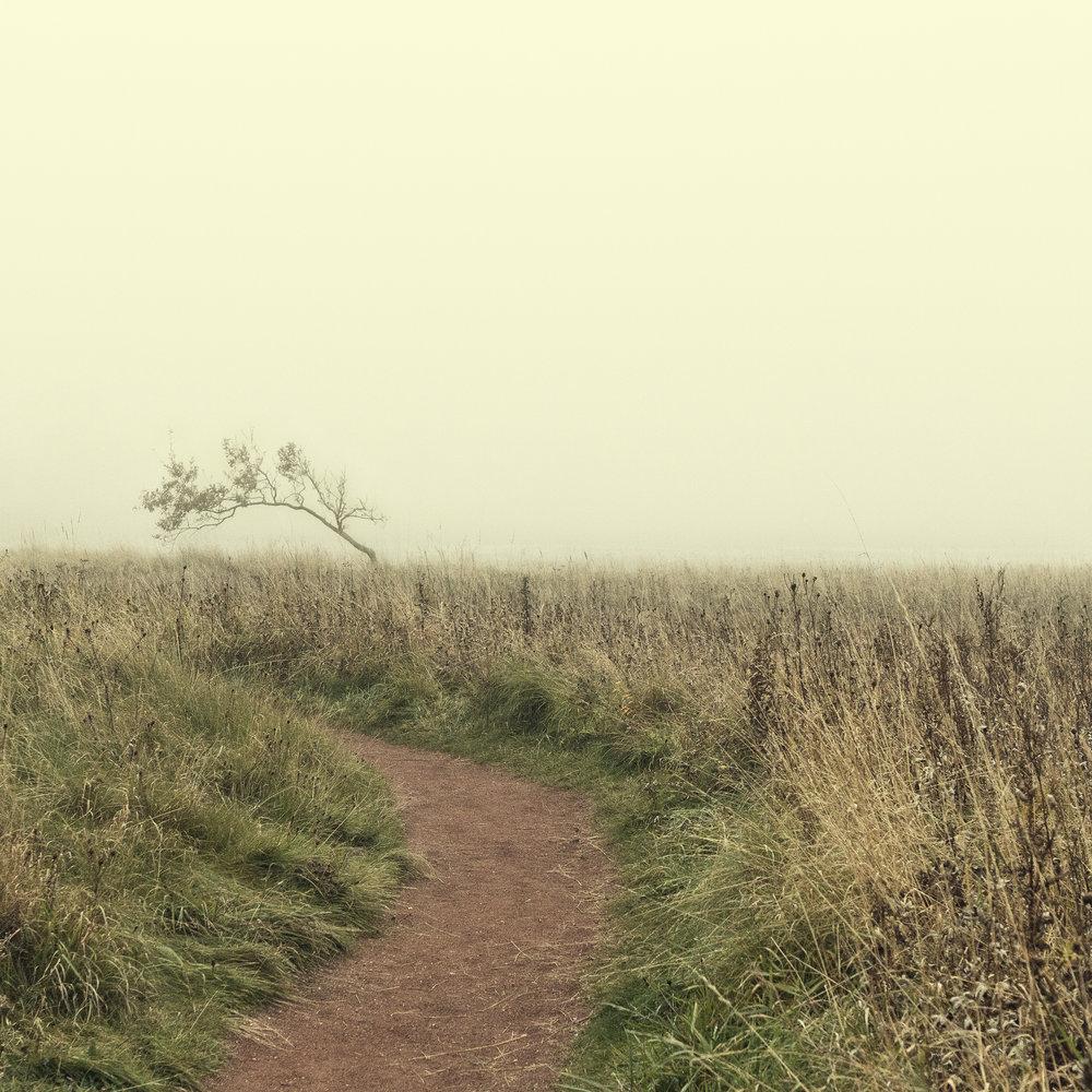 mist7.jpg