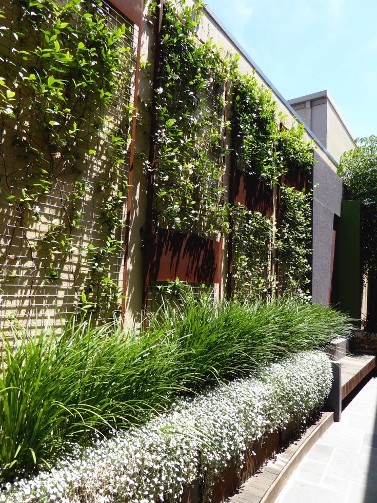 WALDA landscape design awards CultivArt residential medium landscape design garden