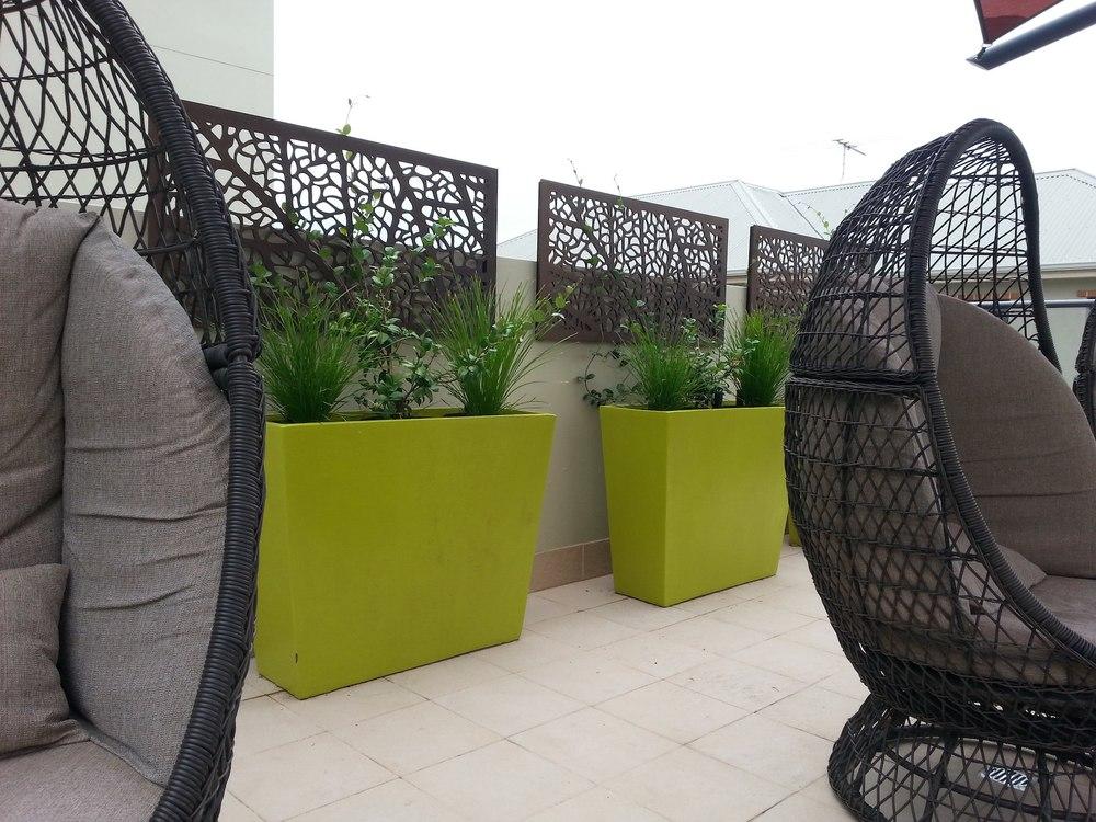 Passionate Plantings Perth landscape design garden design WALDA 3