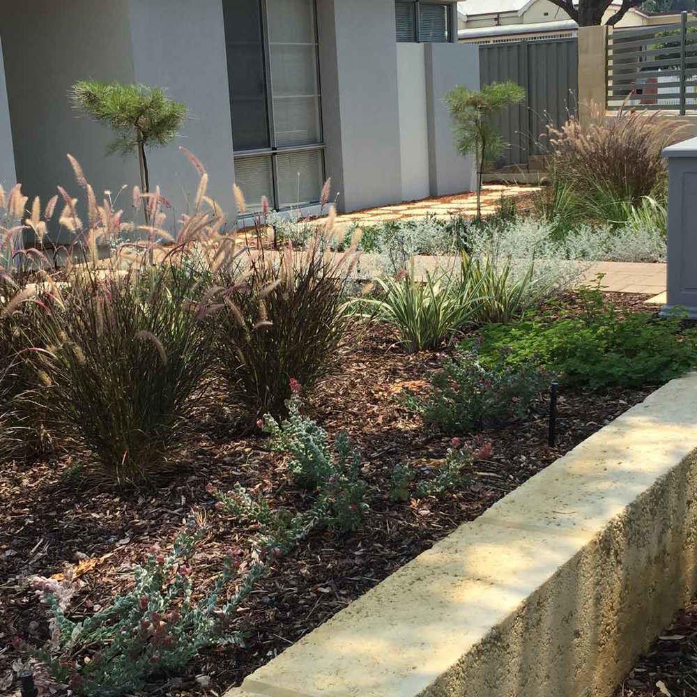 Urban Botanic perth landscape garden design WALDA