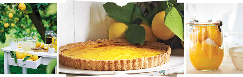 Rustic Lemon Tart and other Meyer Lemon Recipes via Martha Stewart