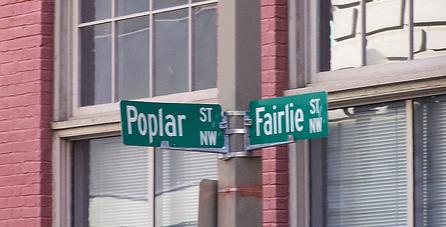 Fairlie - Poplar
