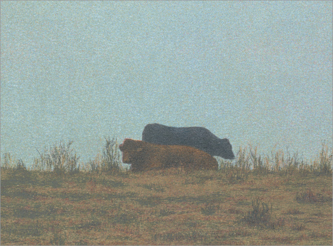 "Two Cows, Hollister Ranch  8 x 11"" original lithograph 18 plates 2009"