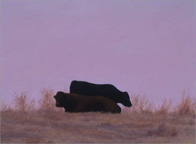 "Two Cows at Hollister  6 x 8""  oil on panel  2007"