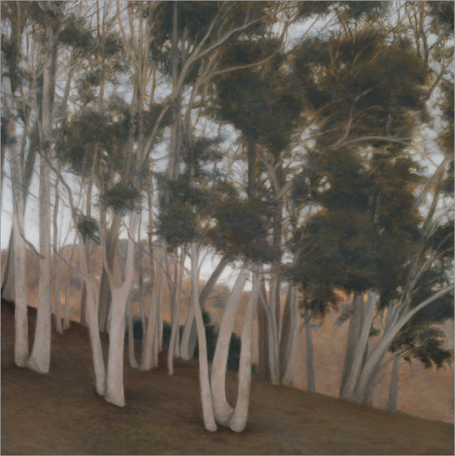 "Stand of Eucalyptus  10 x 10""  oil on panel  2009"