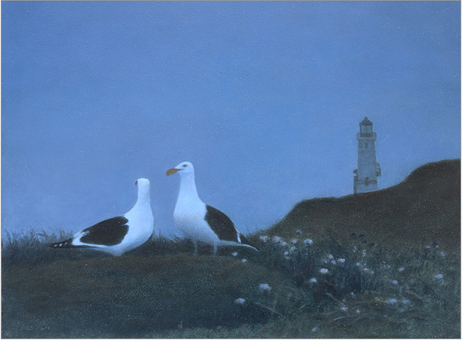 "Night Gulls at Anacapa Is.  9 x 12""  oil on panel  2006"