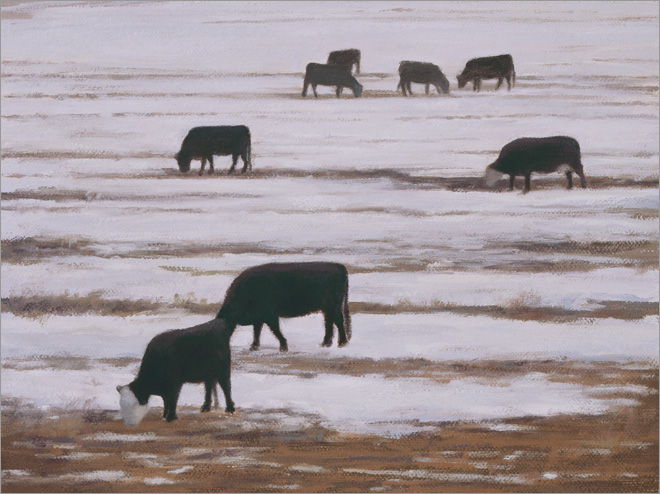 "Grazing Cows, Winter  6 x 8""  oil on linen  2008"