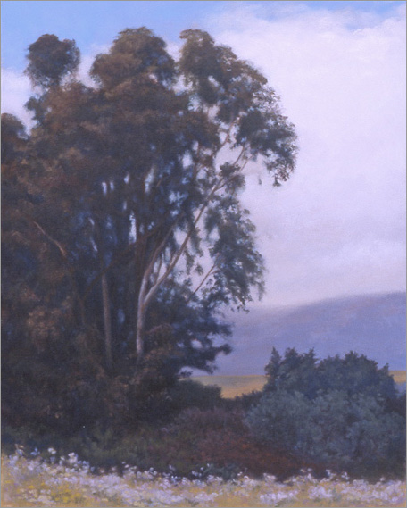 "Eucalyptus Tress, Douglas Preserve  24 x 18""  oil on canvas  2004"