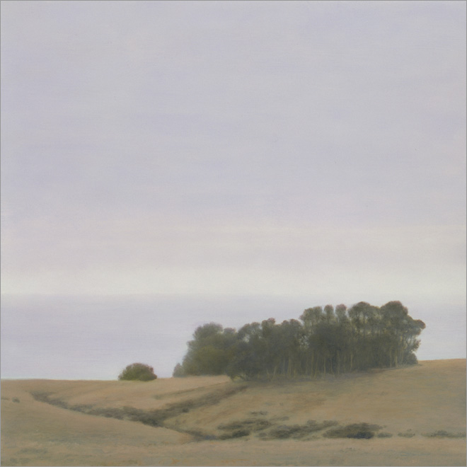 "Eucalyptus Grove  12 x 12""  oil on panel  2009"