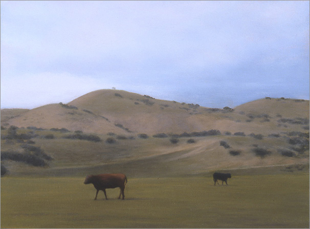 "After the rain, Cuyama  6 x 8""  oil on panel  2006"