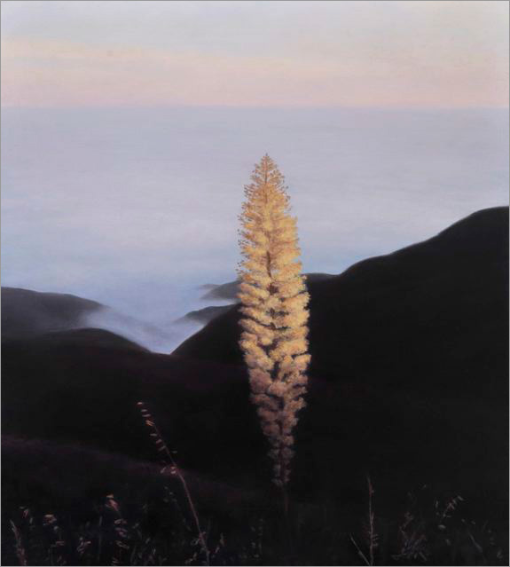 "From Camino Cielo: Yucca and Fog  12 x 10.5""  oil on panel  2008"