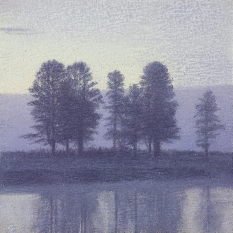 "Trees at Sunrise, Hayden Valley 5 x 5"" oil on linen 2014"