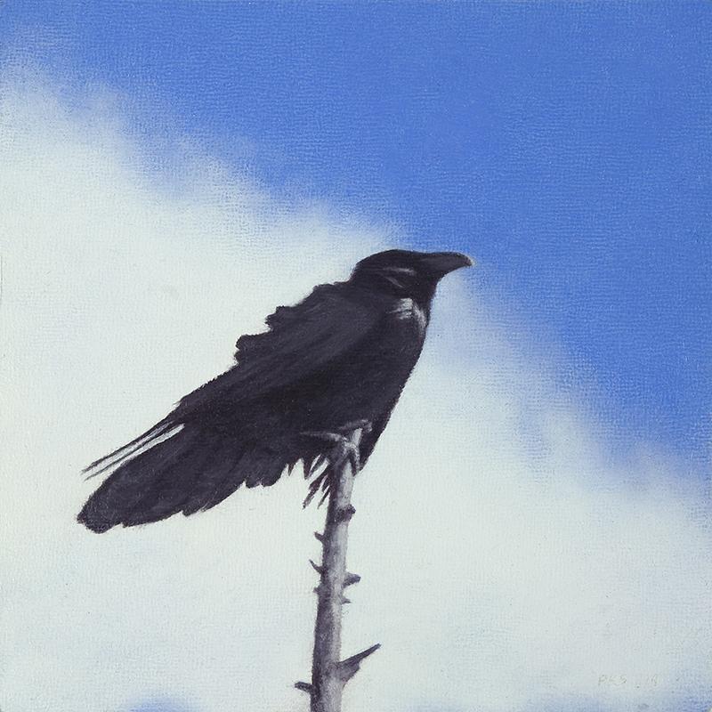 """Raven 5 x 5"""" oil on linen 2015"""