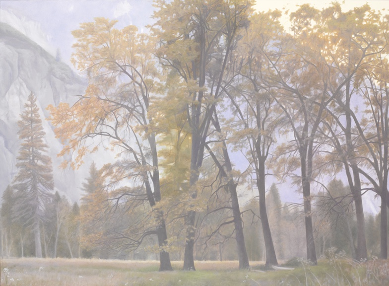 "Black Oaks, Autumn, Yosemite 30 x 40"" oil on canvas 2012"