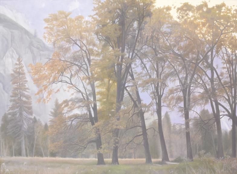 """Black Oaks, Autumn, Yosemite 30 x 40"""" oil on canvas 2012"""