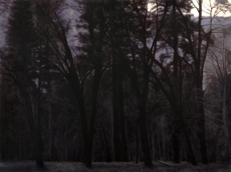 """Black Oaks, Twilight, Yosemite Valley 30 x 40"""" oil on canvas 2012"""