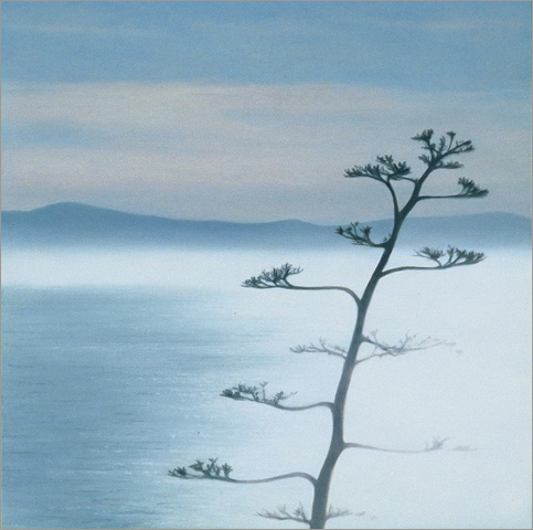"Against the Light: Agave and Island  8 x 8""  oil on panel  2007"
