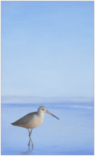 "Sunlit Godwit  5 x 3""  oil on panel  2004"