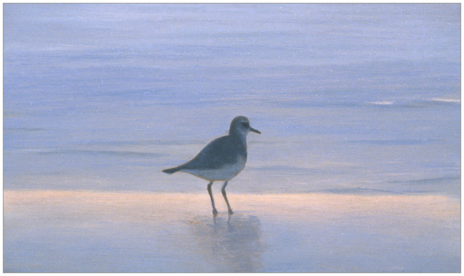 "Lone Sandpiper  3 x 5""  oil on panel  2004"