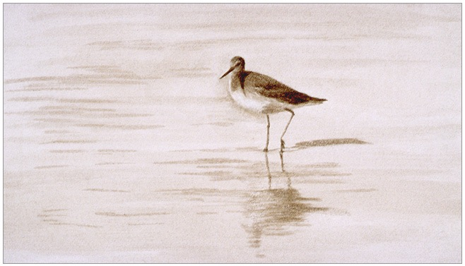 "Sunlit Bird 4x7"" ink wash 20"