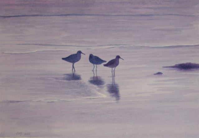 "Three Shorebirds 6x8"" watercolor 2004"