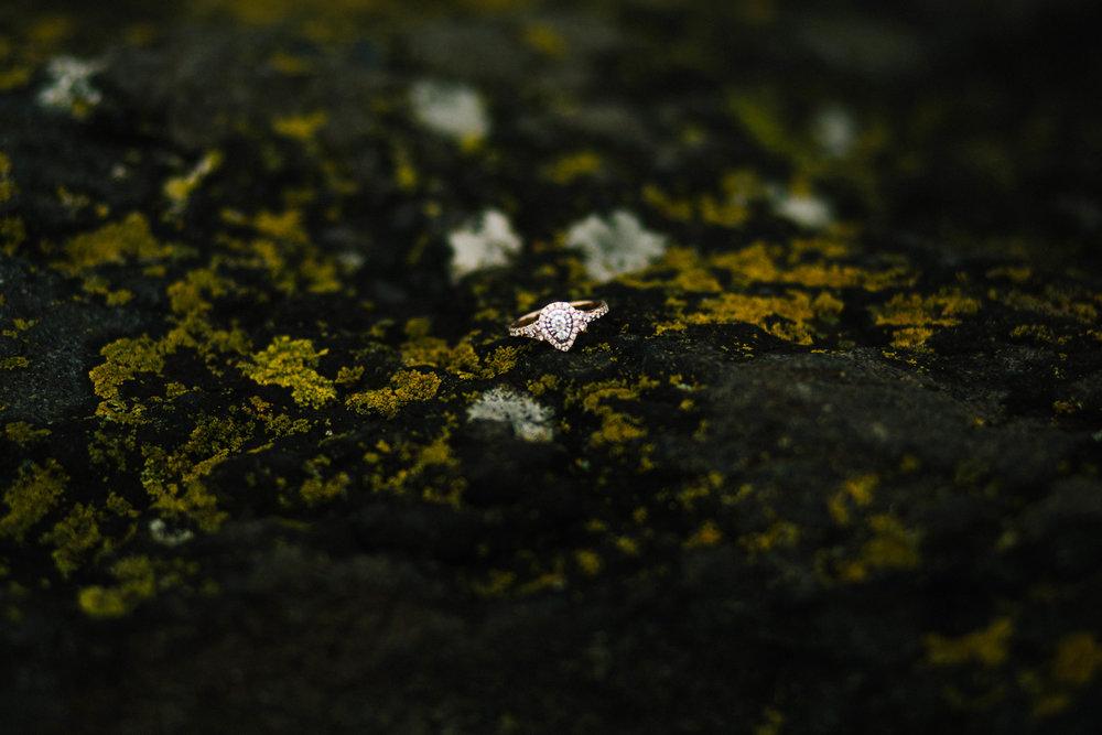 AnnaJPNorthShoreDuluthMinnesotaEngagement_MadeiraCreativePhotography-94.jpg