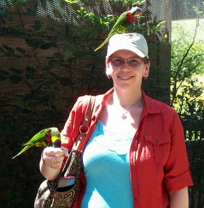 Feeding Rainbow Lorikeets at the Louisville Zoo