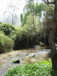Beautiful Riofrio