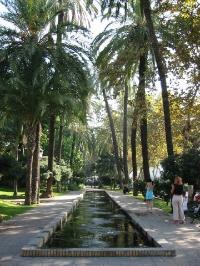 Malaga Parque, Andalucia