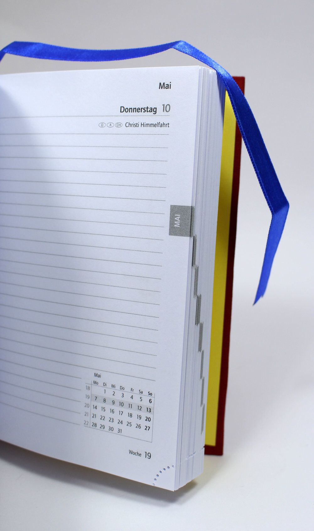 vintage-diary-ladybug_5.JPG