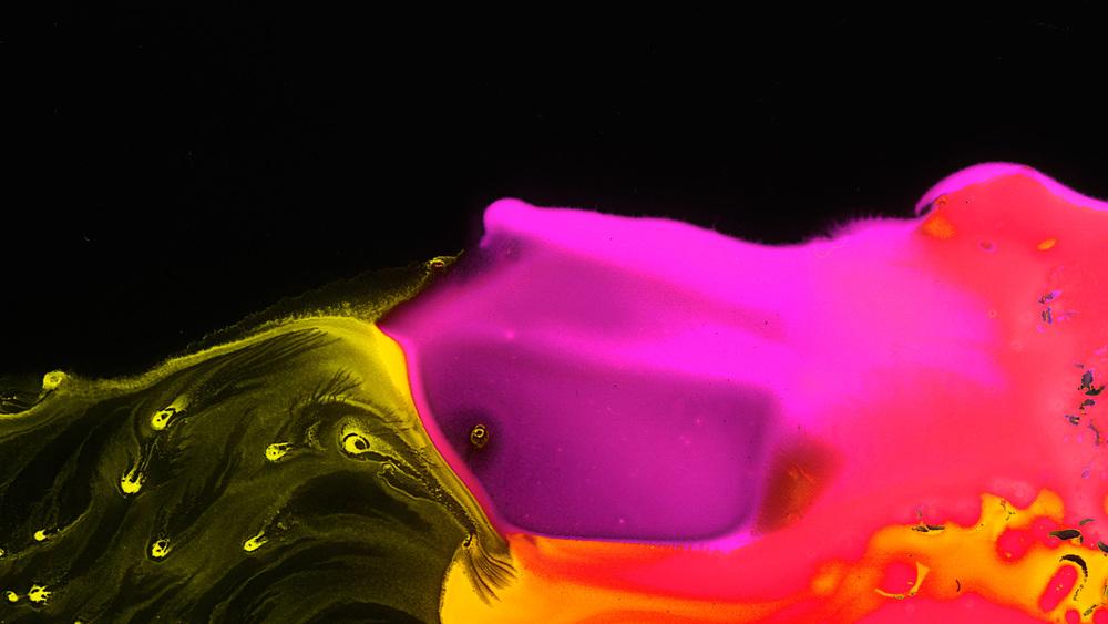 Liquidz003_15.jpg