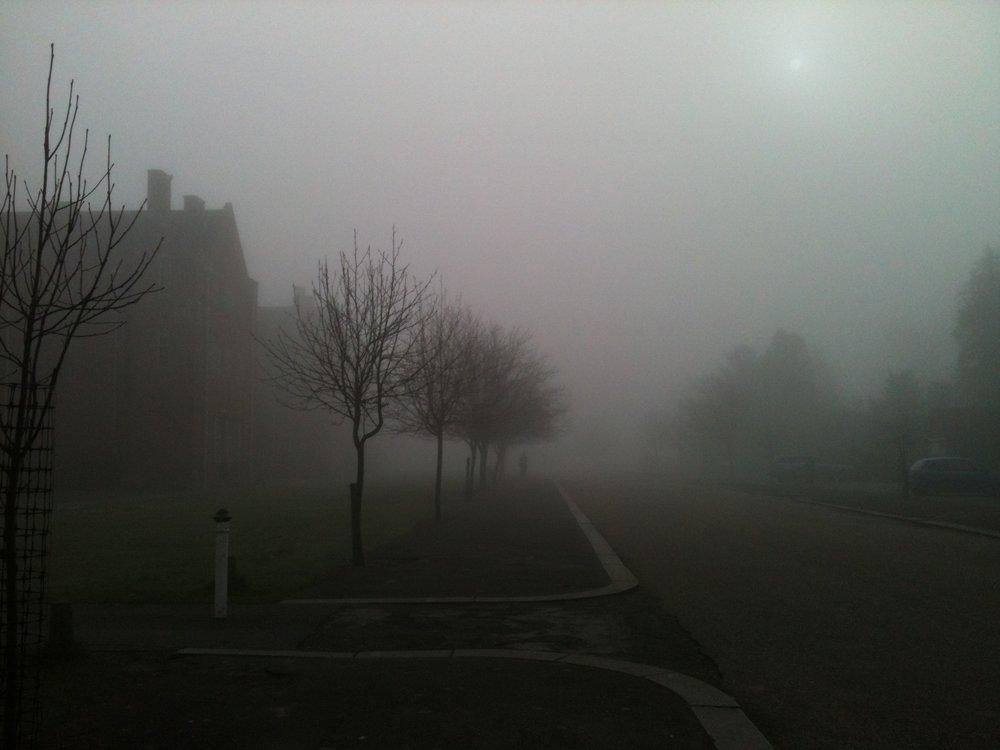 Misty Morning ft. Silhouette of Man (©MiloMcKinnon2010)