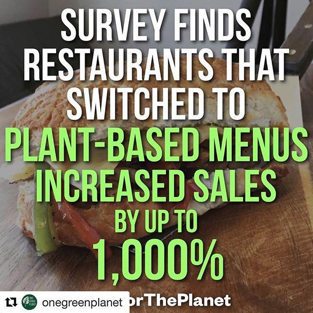 ...Just sayin'😉🌱😘✌🏼. (You've got to try our stuff!!🙋🏼♀️😊🍰😜) . . .  #raw #rawvegan #rawfood #vegan #veganskt #veganfoodporn #veganfood #vegetariskt #gott #fika #bakverk #tårta #nyttigt #rawcake #cakedecorating #foodporn #organic #ekologiskt #glutenfritt #glutenfree #halmstad #destinationhalmstad #easter #plantbased #miljövänligt #småföretagare #mat #ecofriendly #bageri #rawdessert @onegreenplanet