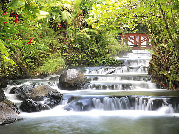 Tabacon Resort & Springs | Photo via tabacon.com